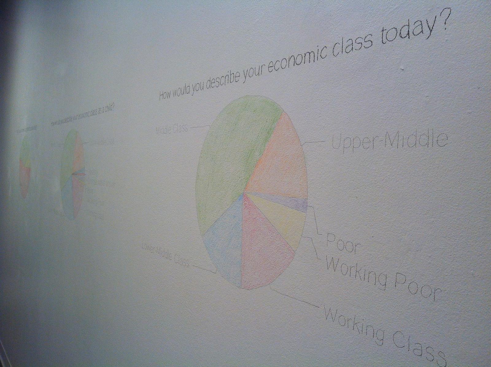 Visualizing the Survey Data